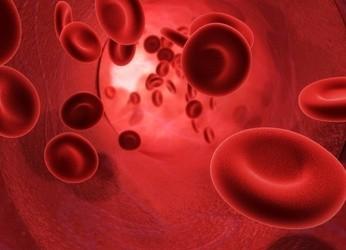 Globules rouges-Santé au travail